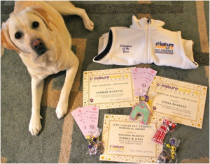 7-Jenna-certificates