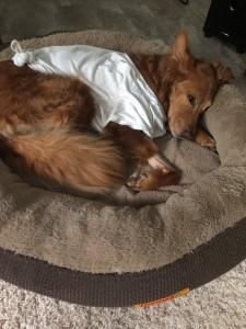 Tucker-Resting