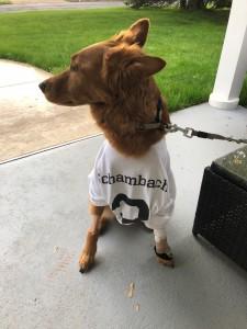Tucker-T-shirt