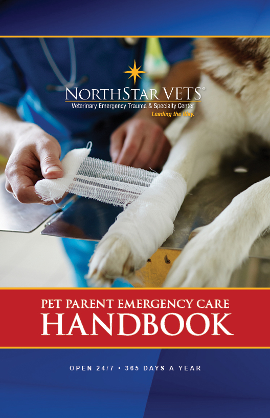 Download your free copy of the NorthStar VETS Pet Emergency Care Handbook